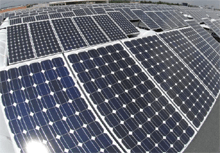 The future of cheap solar panels.